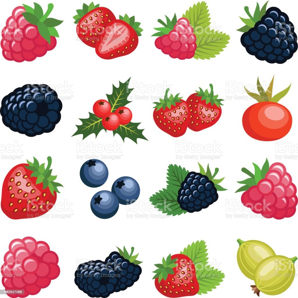Berry fruit vector art illustration