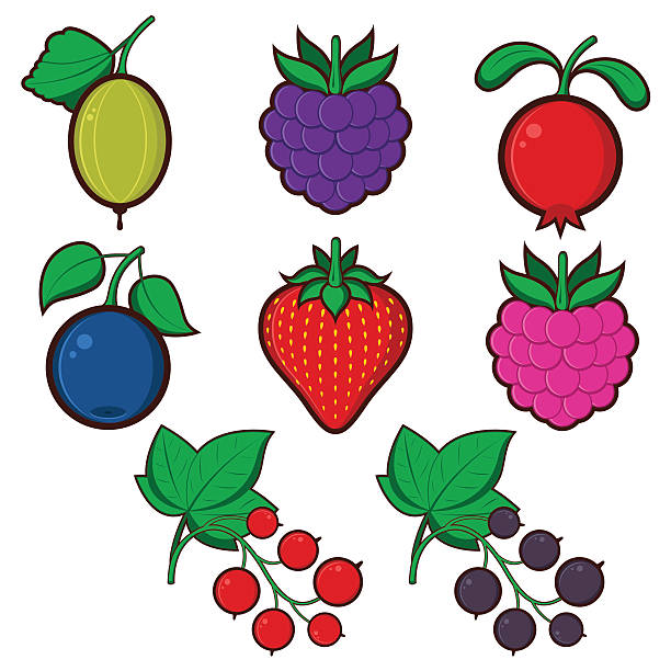 Berry icons set  black currant stock illustrations