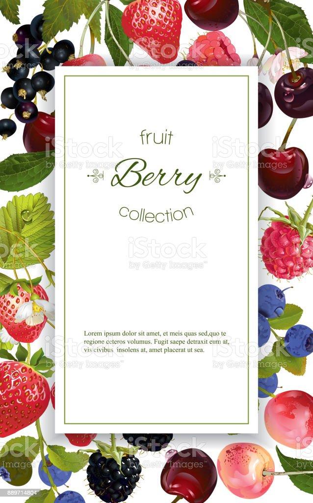 Berry mix banner vector art illustration