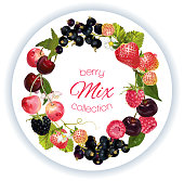 Vector berry round wreath with raspberry, cherry, strawberry and black currant on white round background. Design for natural cosmetics, beauty, organic health care products, aromatherapy, perfume