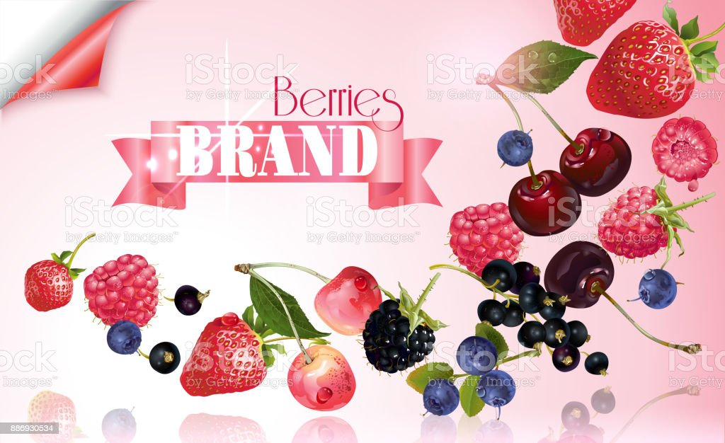 Berry mix falling banner vector art illustration