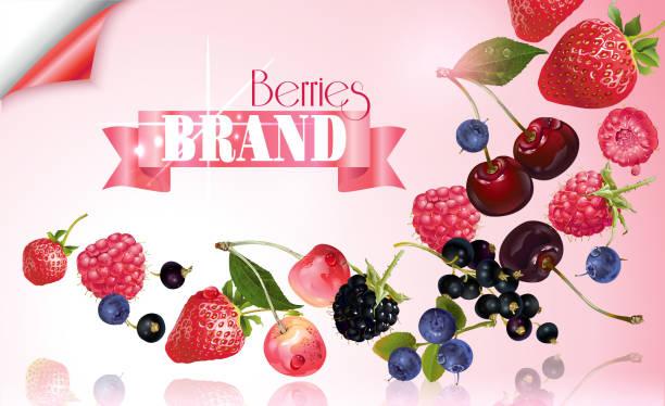 Berry mix falling banner vector art illustration
