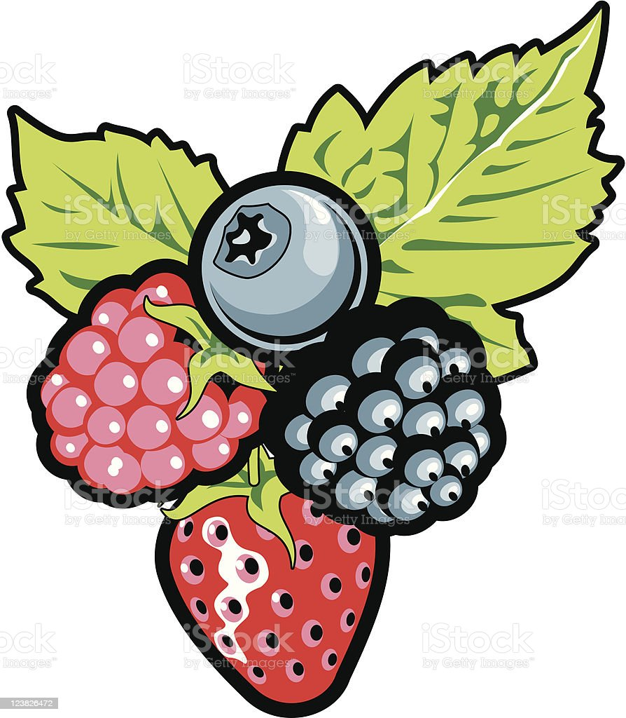 berry royalty-free berry stock vector art & more images of berry