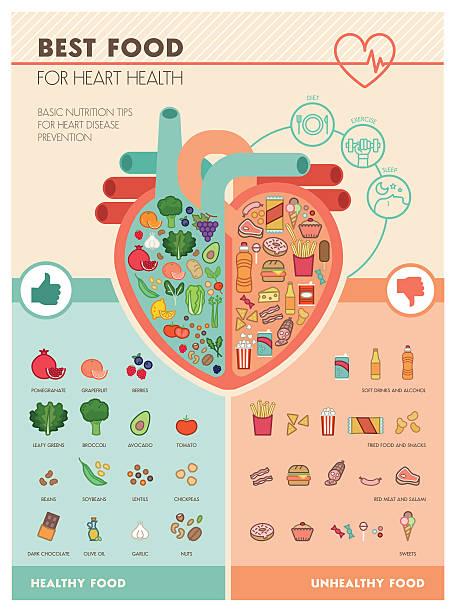 ilustrações, clipart, desenhos animados e ícones de melhor comida para coração - colesterol