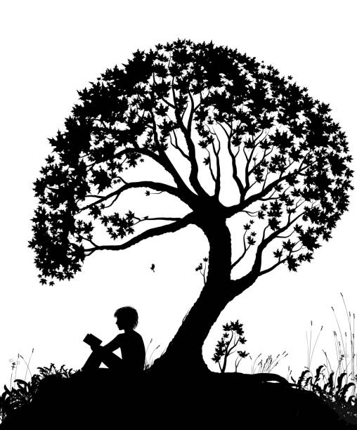 best place to read concept, boy reading under the big tree, park scene in black and white, childhood memories, shadow story, vector best place to read concept, boy reading under the big tree, park scene in black and white, childhood memories, shadow story, vector book silhouettes stock illustrations