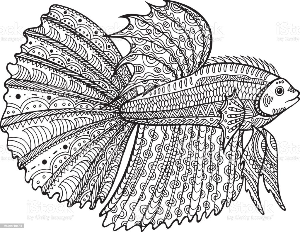 Betta Fish Hand Drawn Coloring Page Stock Vector Art More Images