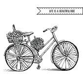 Bicycle hand drawn vector sketch, ink illustration old bike with floral basket isolated on white background, vintage decorative style for design invitation, greeting card, advertising, fashion print