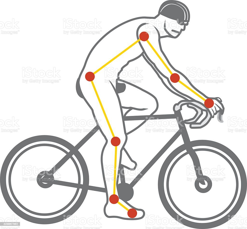 Mit Dem Fahrrad Stock Vektor Art und mehr Bilder von Anatomie ...
