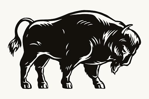 Big american bison template