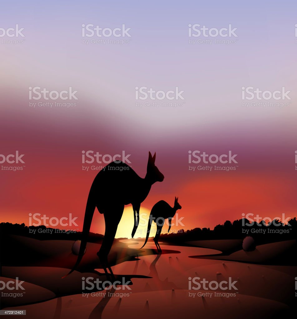 Big and a small kangaroo in the desert vector art illustration