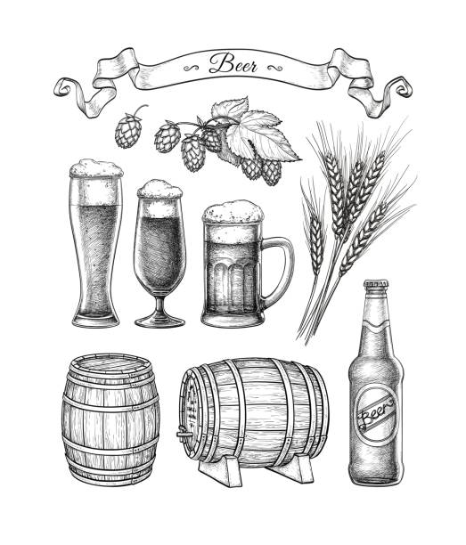 Grote beer set.​​vectorkunst illustratie