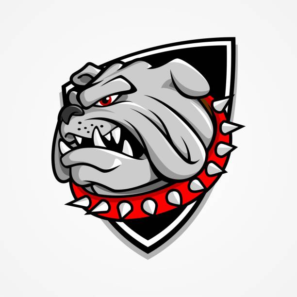 Big Bulldog Head vector art illustration