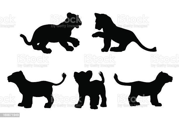 Big cat cubs in silhouette vector id165671949?b=1&k=6&m=165671949&s=612x612&h=jodsfdubag8ypmtsrnzrhqcmrlk 3t2zrr0rk8j76j0=