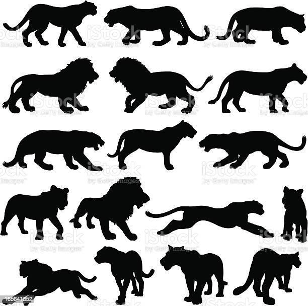Big cat silhouette collection vector id165641352?b=1&k=6&m=165641352&s=612x612&h=6rpgiqkjrhmcqw1lulzxmzw44czopye60ed2vg bsoa=