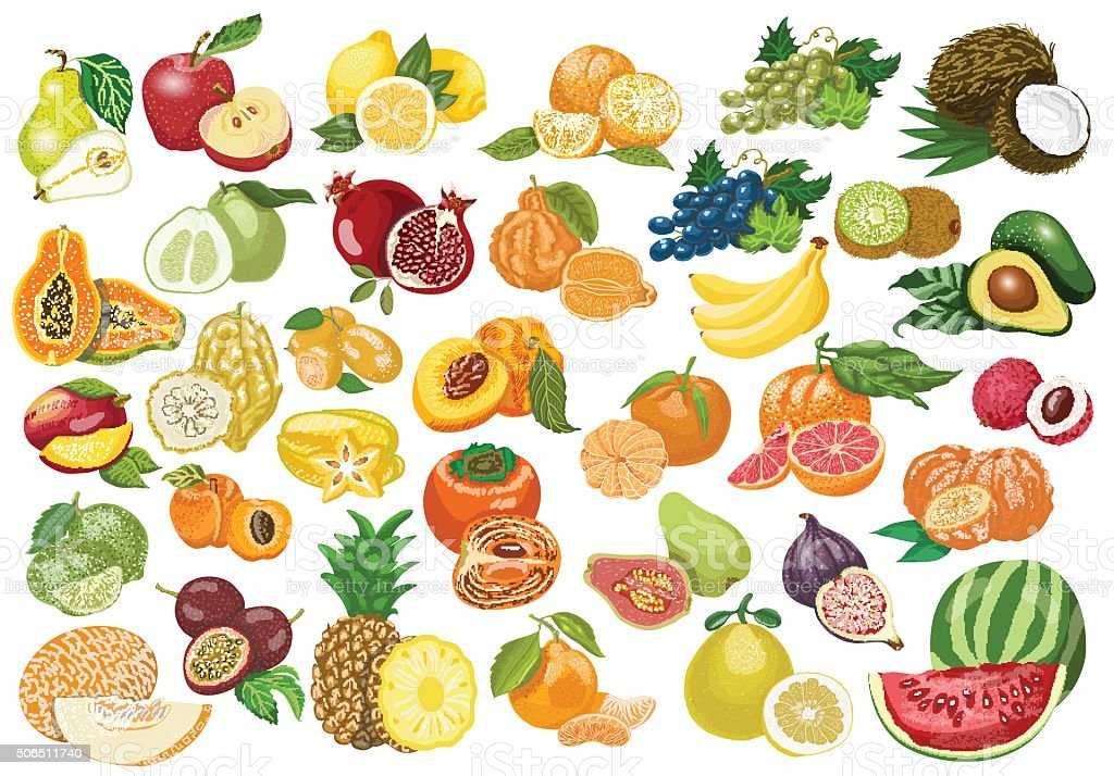 Big collection of isolated fruits on white background vector art illustration