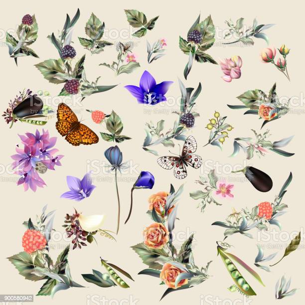 Big collection of vector floral elements and flowers in vintage style vector id900580942?b=1&k=6&m=900580942&s=612x612&h=hwkcnksuvljm6r4nc arshckyouo5hsmdxy ofdrsq8=