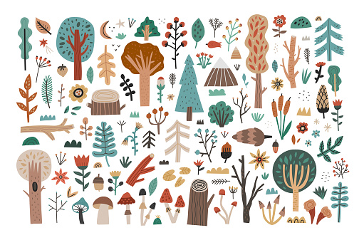 Big collection set of hand drawn woodland flora clipart isolated on white background. Cute forest trees, mushrooms, plants, flowers, leaves, branches, berries, bushes. Flat cartoon vector illustration