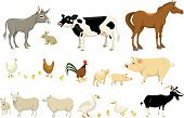 A page with multiple farm animals, including donkey, rabbit, cow, horse and more!