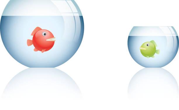 große fischschale und kleine fischschale - fischglas stock-grafiken, -clipart, -cartoons und -symbole