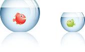 Big fishbowl and small fishbowl
