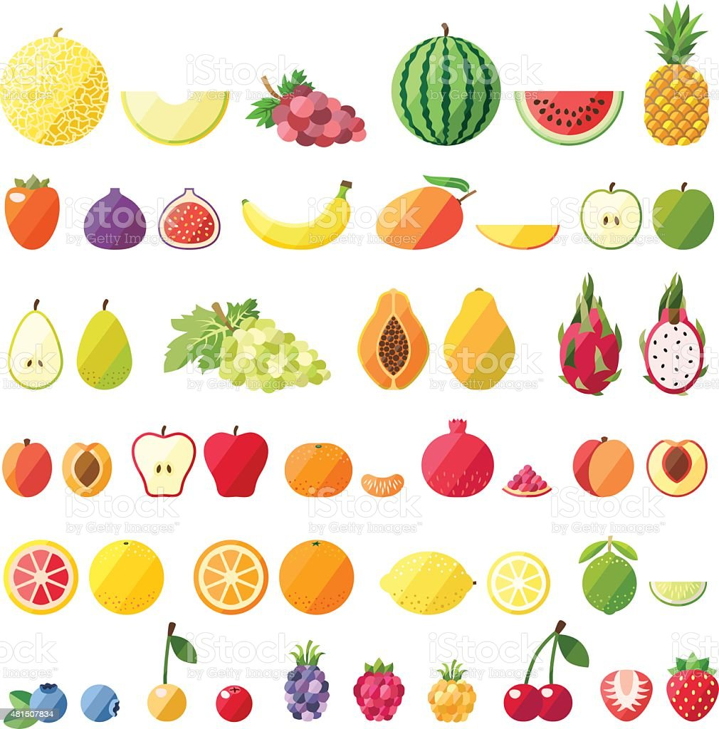 Big fruit vector set. Modern flat design. Fruit icons. vector art illustration
