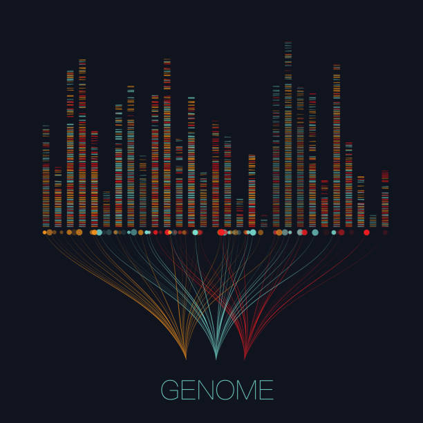 stockillustraties, clipart, cartoons en iconen met grote genomic data visualisatie - dna