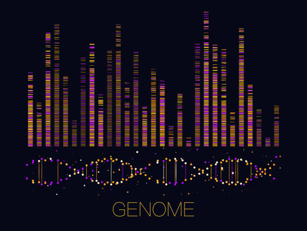 Big genomic data visualization Big genomic data visualization. DNA test, genom map. Graphic concept for your design genetic research stock illustrations