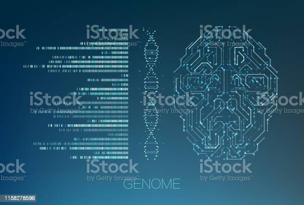 Big Genomic Data Visualization Stock Illustration - Download Image Now