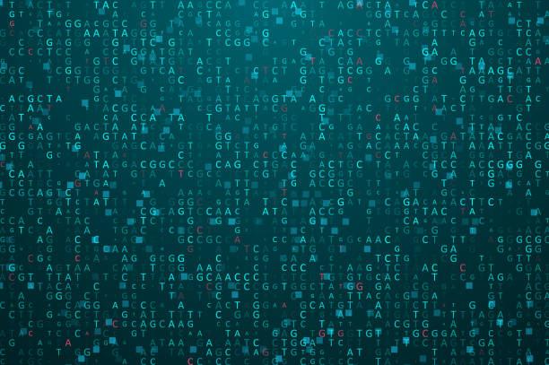 "Big genomic data visualization Big genomic data visualization. Digital AGCT ""code"". Four bases of DNA pairing. Graphic concept for your design genomics stock illustrations"