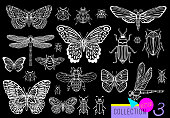 Big hand drawn line set of insects bugs, beetles, honey bees, butterfly moth, bumblebee, wasp, dragonfly, grasshopper. Silhouette vintage sketch style engraved illustration