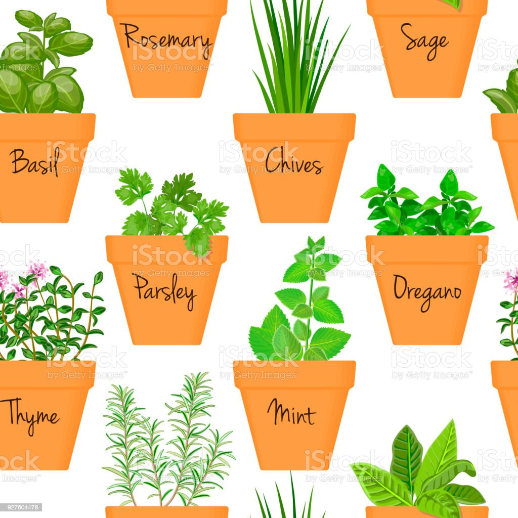 Big icon seamless pattern vector set of culinary herbs in orange terracotta clay pots with labels vector art illustration