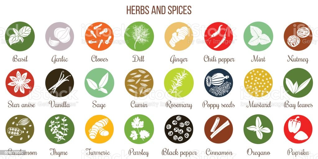 Big icon set of popular culinary herbs and spices white silhouettes vector art illustration