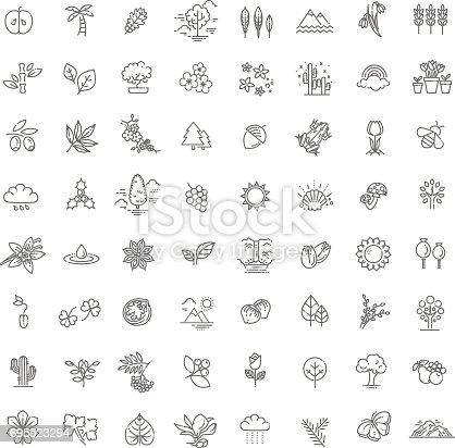 Set of Outline Natural Icons Vector Illustration