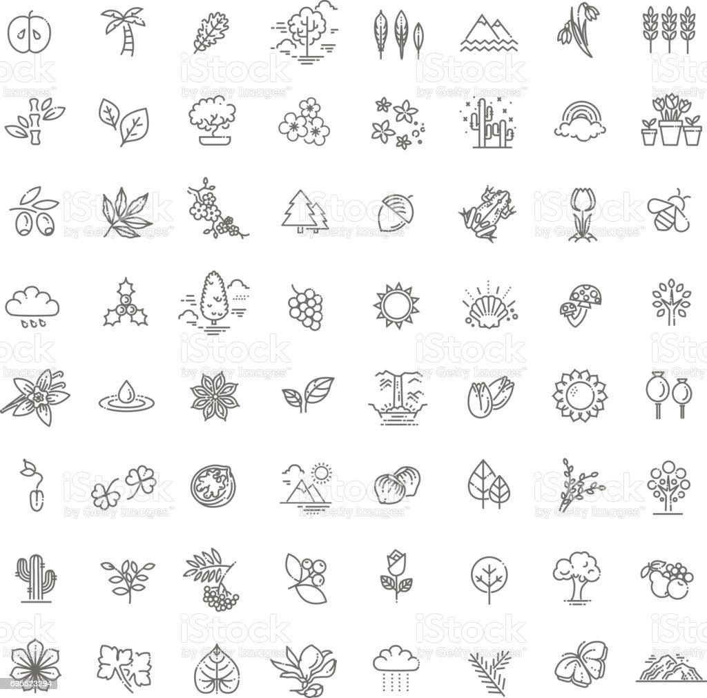 Jeu d'icônes naturelles grand - Illustration vectorielle