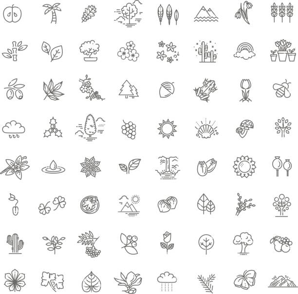 Big natural icon set vector art illustration