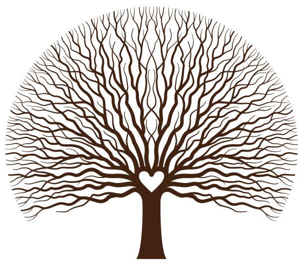 großes herz der eiche baum abbildung - stammbäume stock-grafiken, -clipart, -cartoons und -symbole
