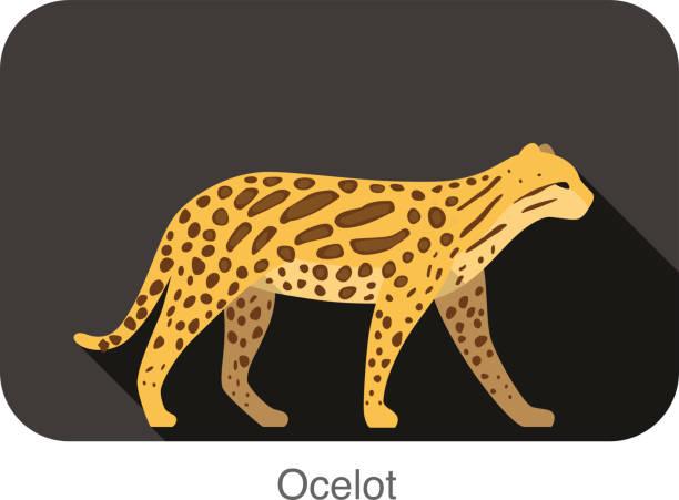 illustrazioni stock, clip art, cartoni animati e icone di tendenza di big ocelot cat walking side flat 3d icon design - ocelot