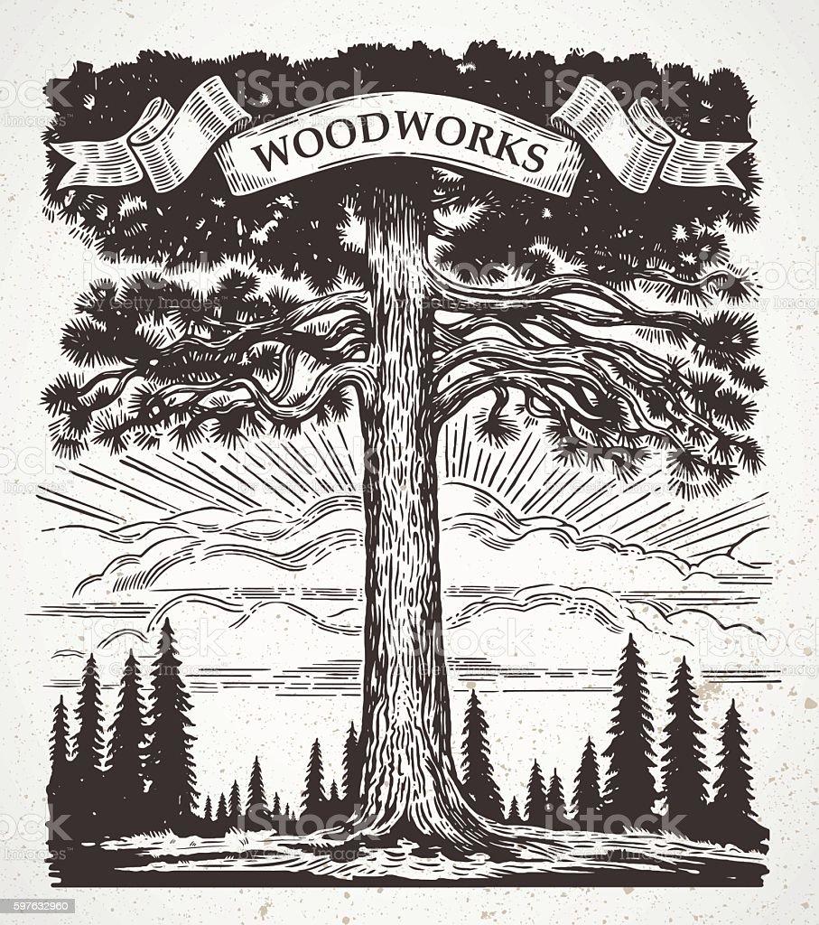 Big pine. - ilustração de arte em vetor