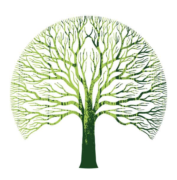 Big round green oak tree illustration vector art illustration