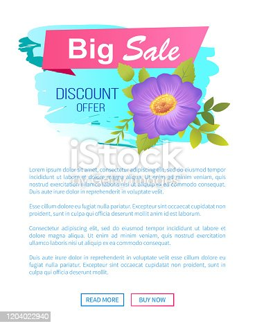 istock Big Sale Discount Offer Promo Poster with Pasque 1204022940