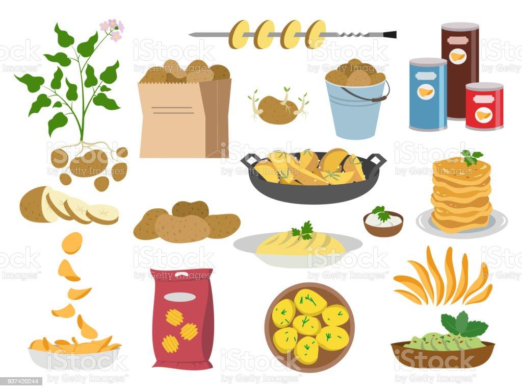 Big set icons of potato dishes on white background. vector art illustration
