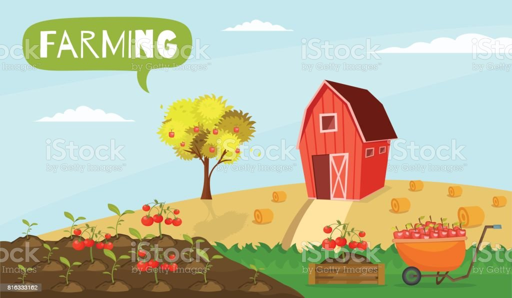 Big set infographics vector farm elements and ecology cartoon gardening background vector art illustration