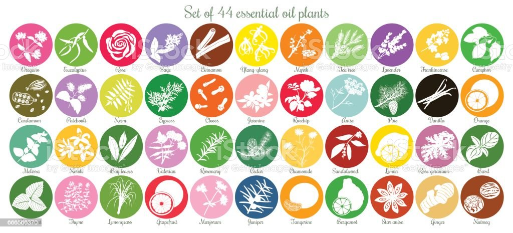 Big set of 44 flat essential oil labels. White Silhouettes vector art illustration