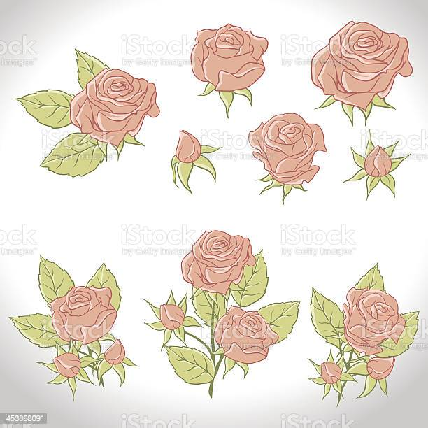 Big set of a beautiful colored roses vector illustration vector id453868091?b=1&k=6&m=453868091&s=612x612&h=5yo6gyqil7nv7tvx2a8rzhikq7sw k5zdl14igyc3h0=