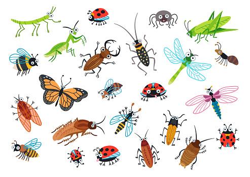 Big set of cartoon beetles. Vector illustration.