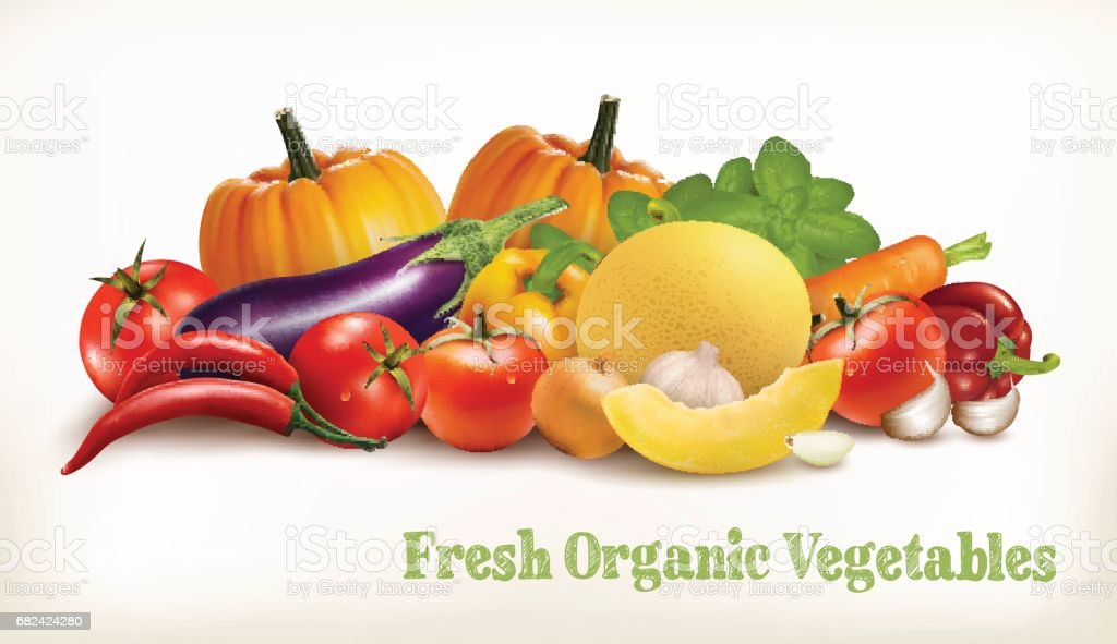 Big set of colorful vector vegetables. Vector illustration. royalty-free big set of colorful vector vegetables vector illustration stock vector art & more images of agriculture