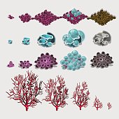 Big set of corals and underwater plants for design