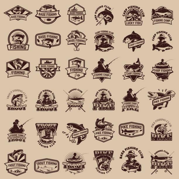 ilustraciones, imágenes clip art, dibujos animados e iconos de stock de gran conjunto de iconos de la pesca. pesca de la carpa, trucha, pesca, pesca, bass lucio pesca. elementos de diseño para la etiqueta, emblema, signo. ilustración de vector. - pesca