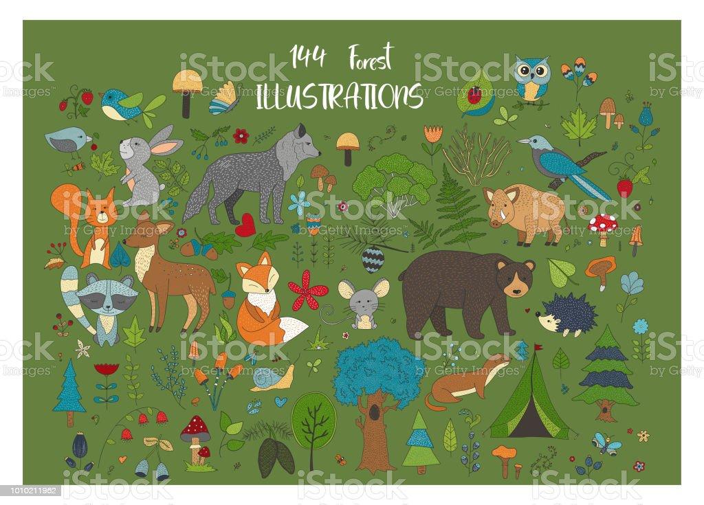 Grand ensemble d'illustraitions forest dessinés à la main avec des animaux de dessin animé de couleur - Illustration vectorielle