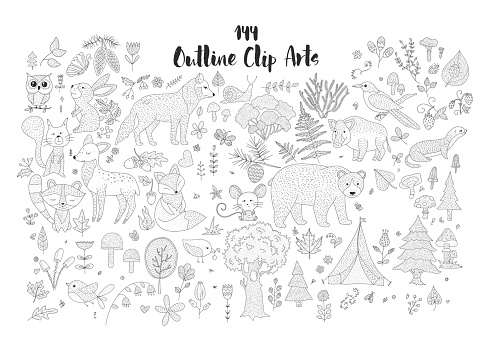 Big set of hand drawn forest illustraitions with outline wild animals.